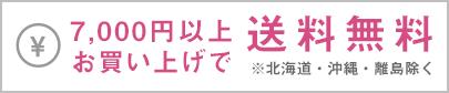 送料620円 10,000(税込)以上のお買い上げで送料無料 ※離島は除く